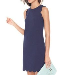 NWT  J. Crew Scalloped Navy Dress